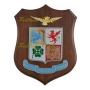 Crest araldicoAeronautica Militare